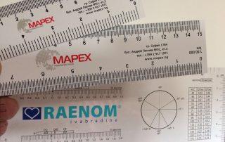 PVC rulers